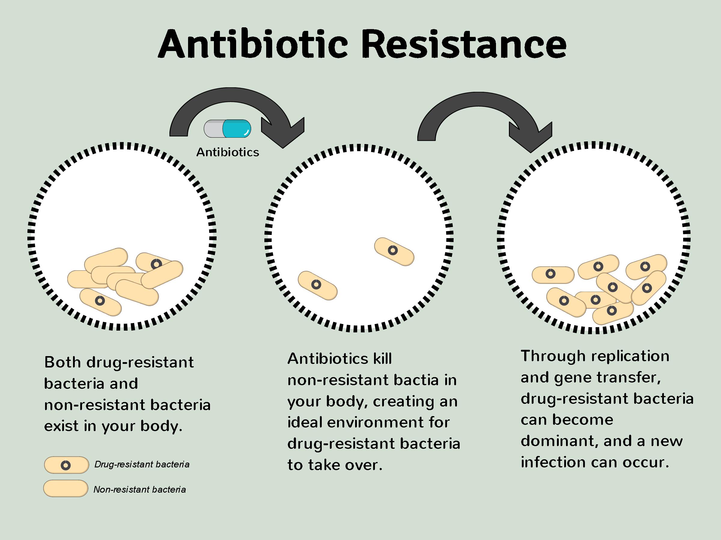 how antibiotics resistance occurs